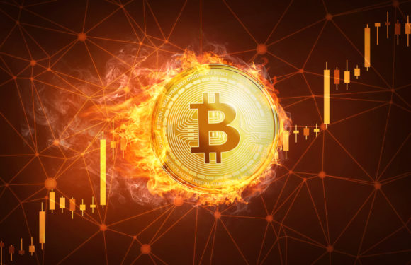 Latest Bitcoin Correction Led To the Mass Liquidation Of About $500 Million