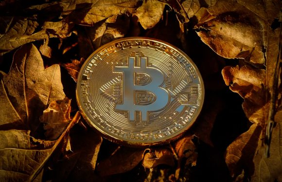 Bitcoin Update: Does Bitcoin Hold A Bright Future Ahead?