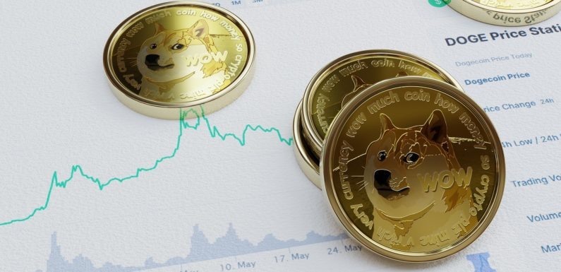 Elon Musk has Once Again Tried to Pump Dogecoin's Price Value