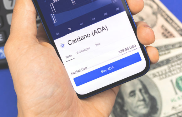 Charles Hoskinson Wins A Bet Of $50K On Cardano Launching Alonzo On Time